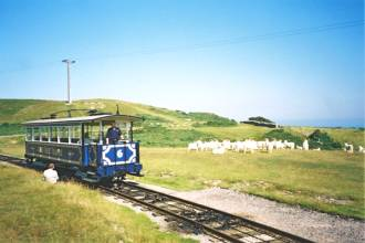 Great orme Tramway and Goats